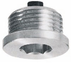 Hydraulic magnetic oil-drain plug with hex slot, 2  BSP, TCEM8G