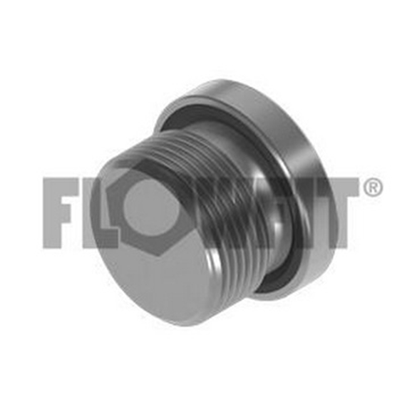 BSP Socket Headed Plug With 3869 Seal, 1/8""